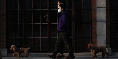 cani a passeggio con padroni con mascherina