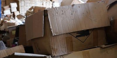 caja carton abandonada