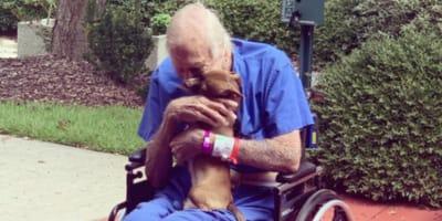 old man hugs brown chihuahua in wheelchair