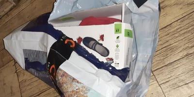 Pudełko  po butach  w którym był kot