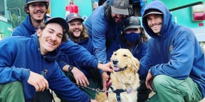 Golden Retrievers make amazing therapy dogs