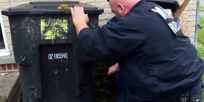 Ratownik wezwany do bezdomnego szczenięcia: kiedy widzi, co jeszcze kryje się za śmietnikiem jest wstrząśnięty