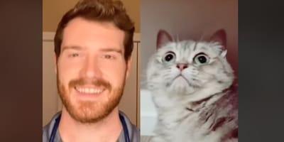dottor Finn e un gatto