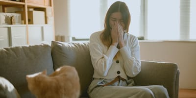 Sei allergico ai gatti? Prendi un gatto anallergico!