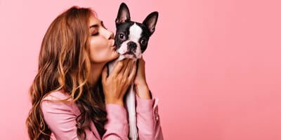 Hazle a tu perro su propia ropa