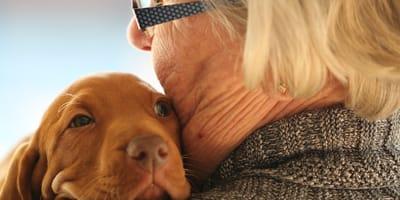 Anciana perro