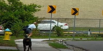 Doberman biegnie za listonoszem. Nagle robi coś, czego nikt się nie spodziewał! (VIDEO)