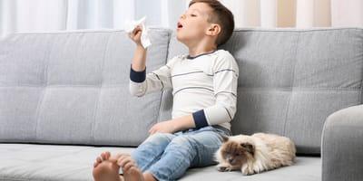 Chłopiec alergik