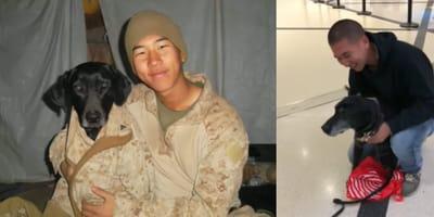 Handler Kang and dog blue
