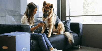 cane e padrona