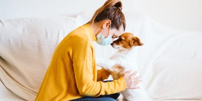 Pet owners have a better time in quarantine than non-pet owners, study says