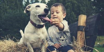 adolescente agarra con fuerza del cuello a un perro
