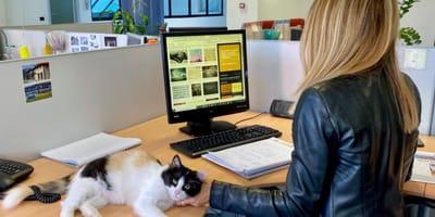donna-in-ufficio-e-gatto