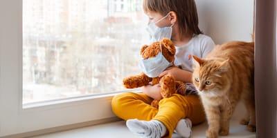 Tratamientos naturales contra la alergia a los gatos