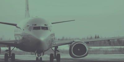 Compran boleto de avión para su gato y lo que hace la aerolínea indigna a las redes