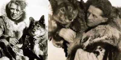 You've got the wrong dog: Balto isn't the true hero of the 1925 serum run to Nome