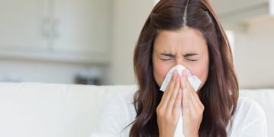 """6 pomysłów, dzięki którym poradzisz sobie z alergią na """"sierść kota"""""""