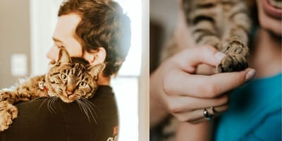 People cuddling cat and holding cat paw