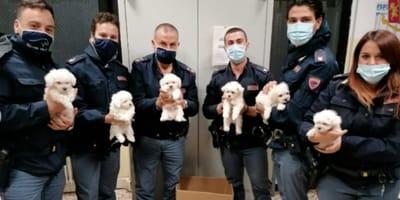 Agenti-con-cuccioli-di-cane-in-braccio
