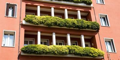Se asoma a su terraza en Málaga, mira a un lado y descubre la mayor perversión del ser humano