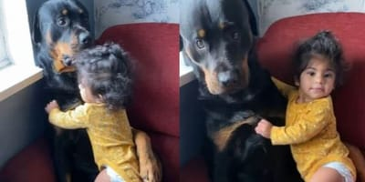 dziecko przytula psa