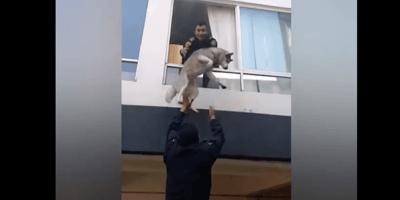policias rescatan perro