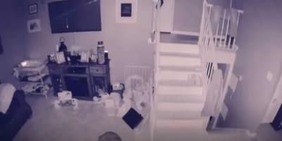 stanza filmata di notte