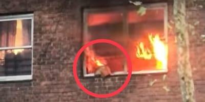 Fenster von brennender Wohnung