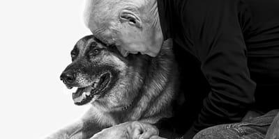 Joe Biden: Schäferhund Champ gestorben