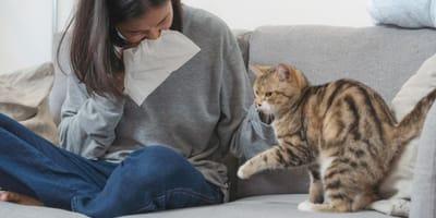ragazza allergica cerca rimedi per l'allergia ai gatti