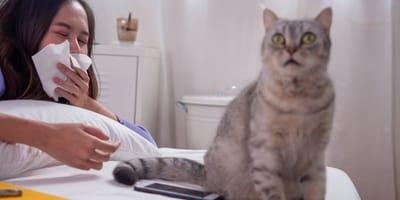 test di allergia al gatto