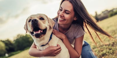 How can I tell if a dog likes me?