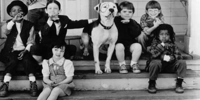 Die kleinen Strolche und ihr Hund Pete