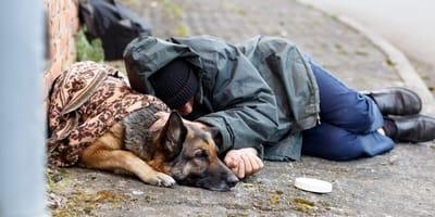 mendigo duerme en el suelo junto a su perro