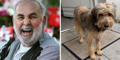 Udo Walz hat kurz vor seinem Tod einen Tierheim-Hund adoptiert