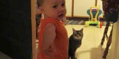 Dziewczynka i kotek stoją w kuchni