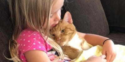 Little girl holding ginger cat