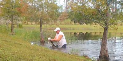 uomo-in-uno-stagno-e-alligatore