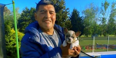 Diego Maradona mit Hund