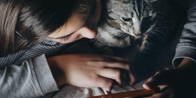 <p>Czy już niedługo będzie można porozmawiać z kotem jego językiem?</p>