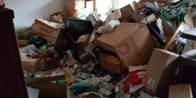 Wnętrze zapuszczonego mieszkania.