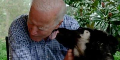 Joe Biden i pies.