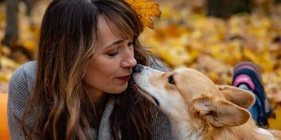 Come fa il cane a riconoscere il padrone?