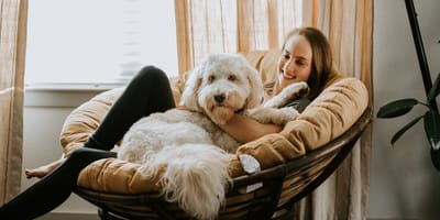 10 important questions you should ask a potential pet sitter