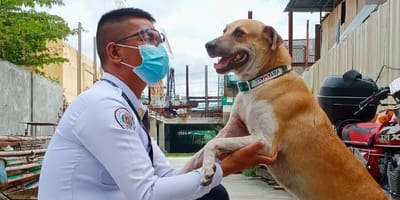 A security guard greets new recruit Dogdog
