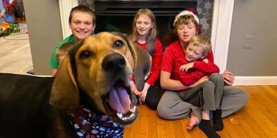 Ten pies jest mistrzem pierwszego planu na zdjęciach świątecznych. Padniecie ze śmiechu