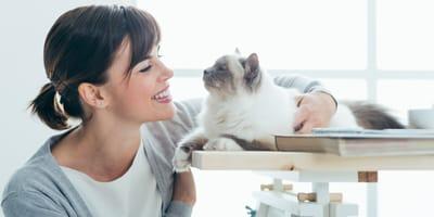 Koci język, czyli jak porozumieć się ze swoim kotem?