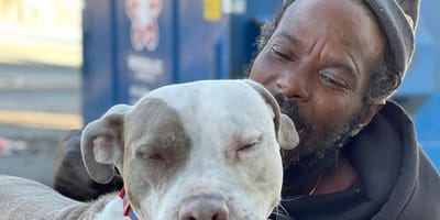 Homeless man storms into shelter engulfed in flames to rescue animals inside