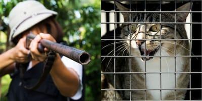 Jägerin und erschrockene Katze