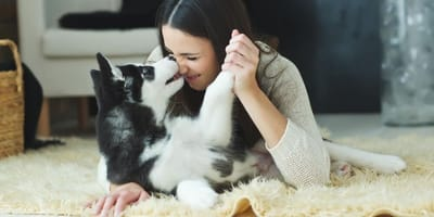 ragazza-bacia-husky